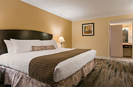BEST WESTERN PLUS Kings Inn -Suites